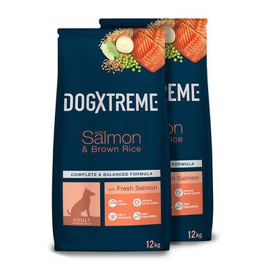 Dogxtreme Salmón y arroz - 2x12 kg Pack Ahorro