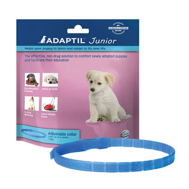Adaptil Collar Junior