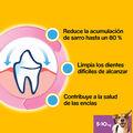 snacks_dentales_pedigree_dentastix_pequenas_56u_04_PED276743_M.jpg image number null