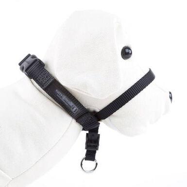Easy Walk collar de manejo para perros color negro