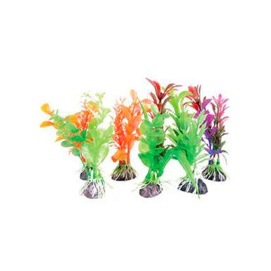 Zolux mini planta