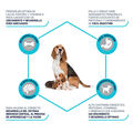 pienso_perros_affinity_advance_mother_dog_puppy_initial_beneficios_ADV500310_M.jpg image number null