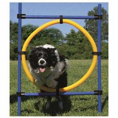 Ribecan aro de salto agility para perros