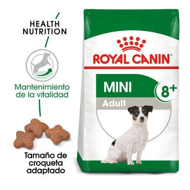 Royal Canin Mini Adult Mature +8