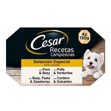 Multipack 24 Latas Cesar Receta Campesina Selección Especial 150 gr