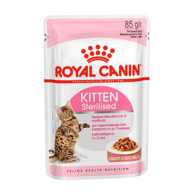 Pack 12 sobres Alimento húmedo Royal Canin Feline Kitten Sterilised 85 gr