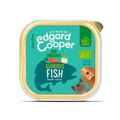 Pack 17 Tarrina Edgard & Cooper comida húmeda 100 gr