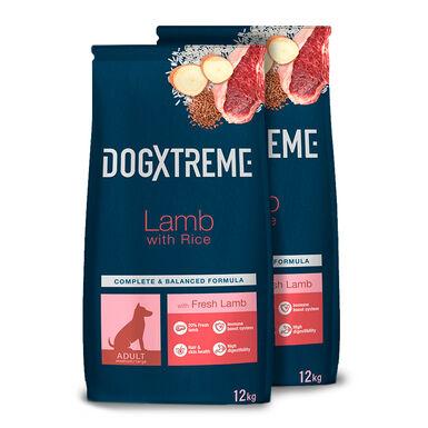 Dogxtreme Adult cordero y arroz - 2x12 kg Pack Ahorro