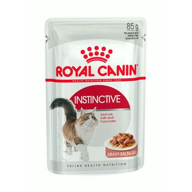 Pack 12 sobres Royal Canin Feline Instictive 85 gr