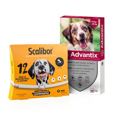 Scalibor 65cm + Pipetas Advantix 10-25kg