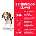 pienso_perros_hills_puppy_medium_cachorro_cordero_beneficios_HIL7696M_M.jpg image number null