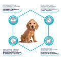 pienso_perros_affinity_advance_puppy_medium_beneficios_ADV507319_M.jpg image number null