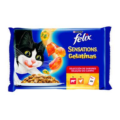 Felix Sensations carne en gelatina sabores surtidos