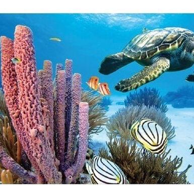 Penn Plax fondo marino fondo para acuarios en 3D