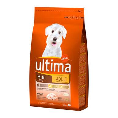 Affinity Ultima Mini Adult