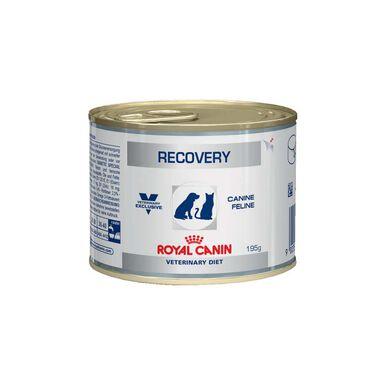 Royal Canin Veterinary Recovery Lata