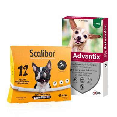 Pack Scalibor Collar Antiparasitario para perros + Pipetas Advantix
