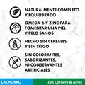 Nutro Grain Free junior razas medianas cordero image number null