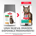 Hill's gato Perfect Weight pollo, , large image number null