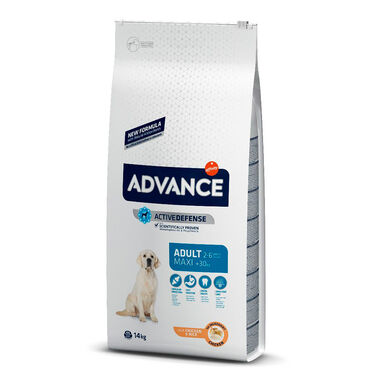 Affinity Advance Maxi Adult pollo y arroz