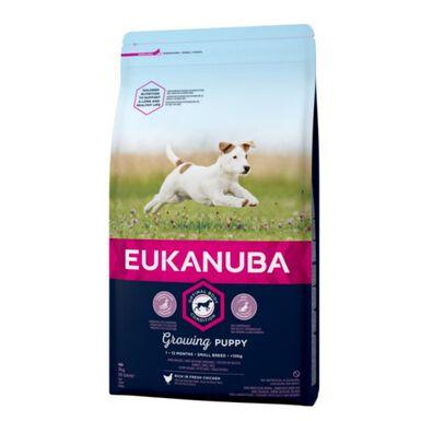 Eukanuba Puppy&Junior Small Breed pienso para perros