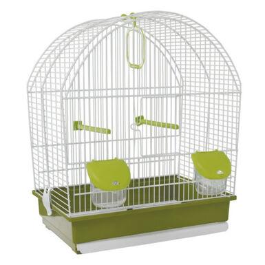 Voltrega pequeña techo curvo jaula para canarios