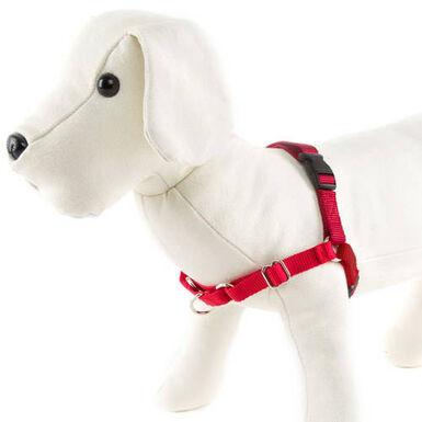 EasyWalk arnés de manejo para perros rojo