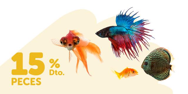 Descuentos peces