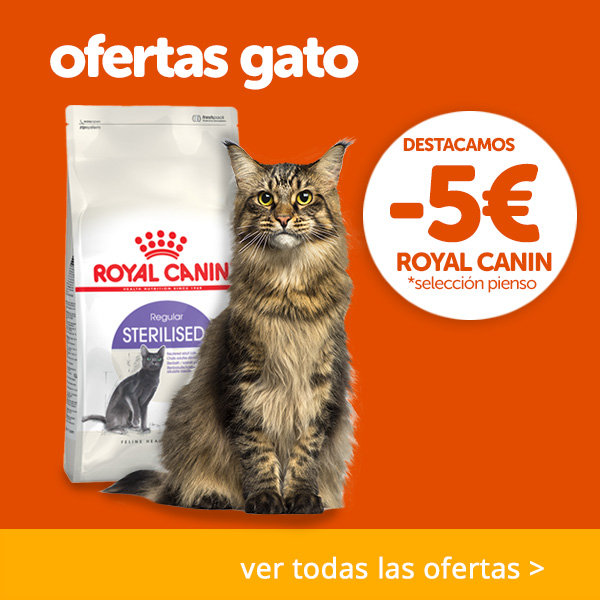 Ofertas gato - 5€ Royal Sterilised