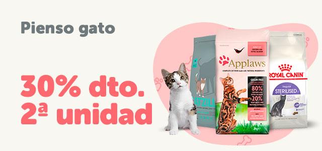 Ofertas gato