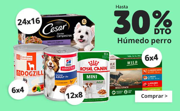 Hasta 30% en comida humeda perro