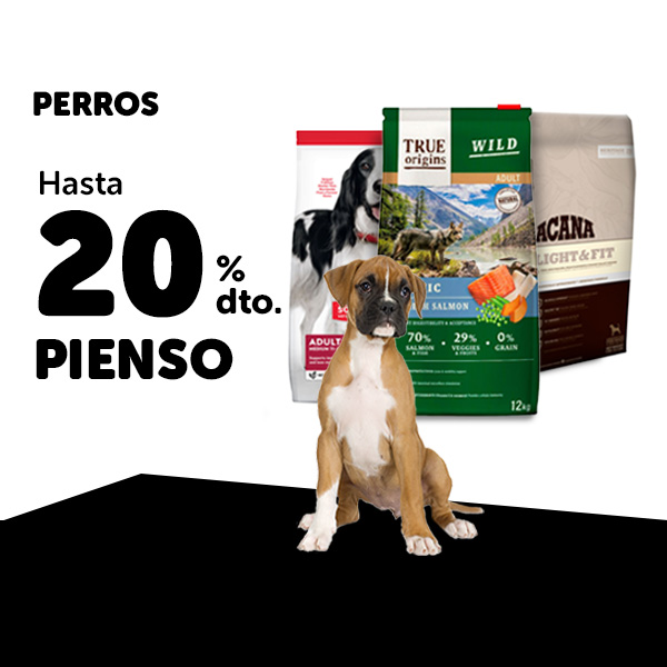 Ofertas Pienso Perro Black Friday