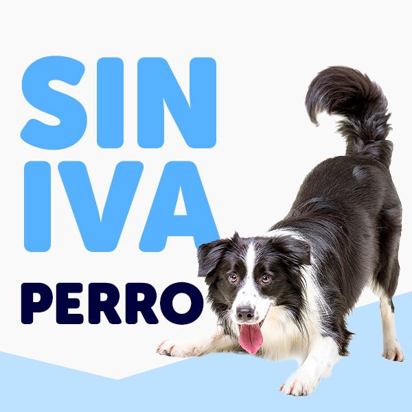 Ofertas Perro Cyber Monday