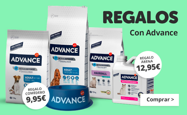 Regalos con Advance