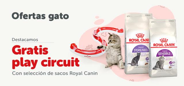 Regalos con Royal Canin