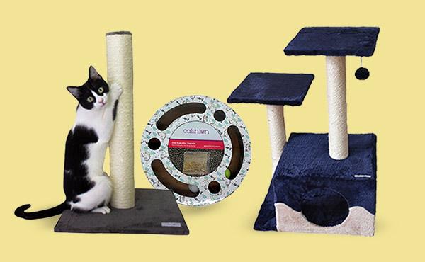 Rascadores para que todos los gatitos juegen