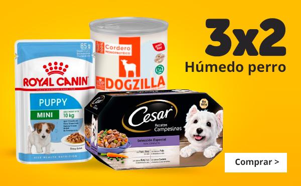 3x2 en comida húmeda para perro
