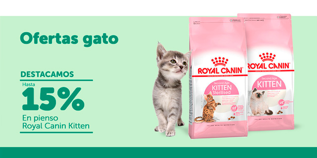 Ofertas gato Royal Canin