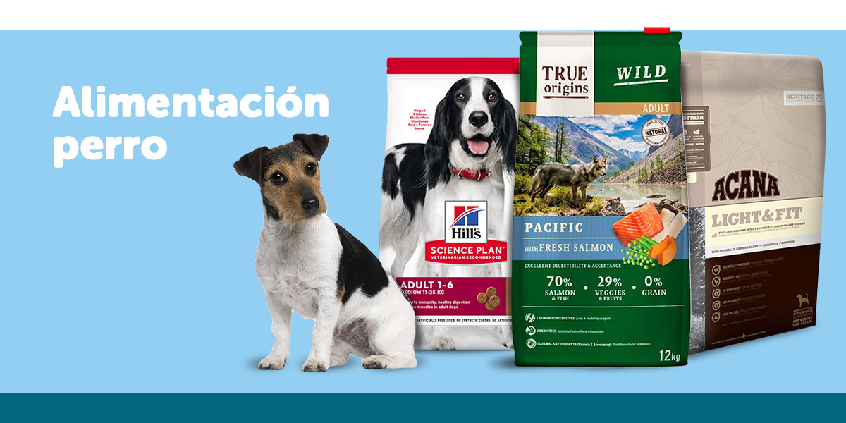 alimentación para perro