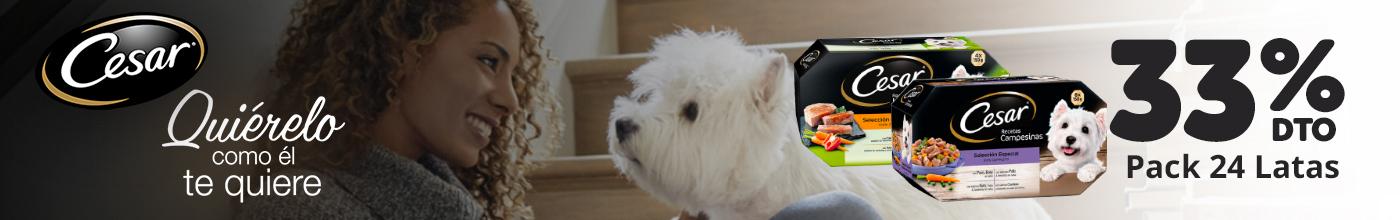 Alimento húmedo perros César - 33% dto.