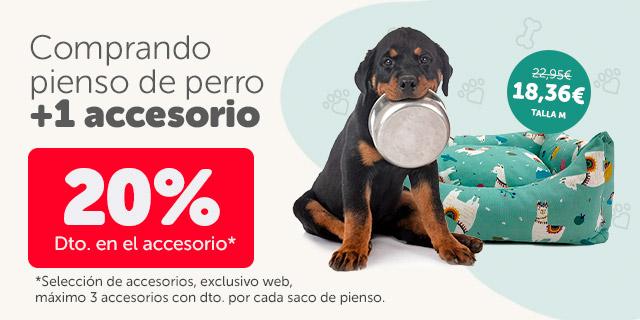 Consigue un 20% dto. en accesorios comprando pienso para perro