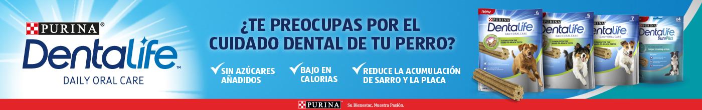 Para el cuidado dental diario de tu perro