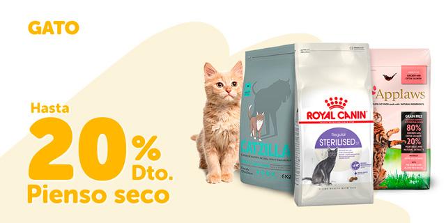 Hasta 20% pienso gato