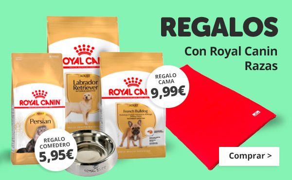 Regalos con Royal Canin Razas