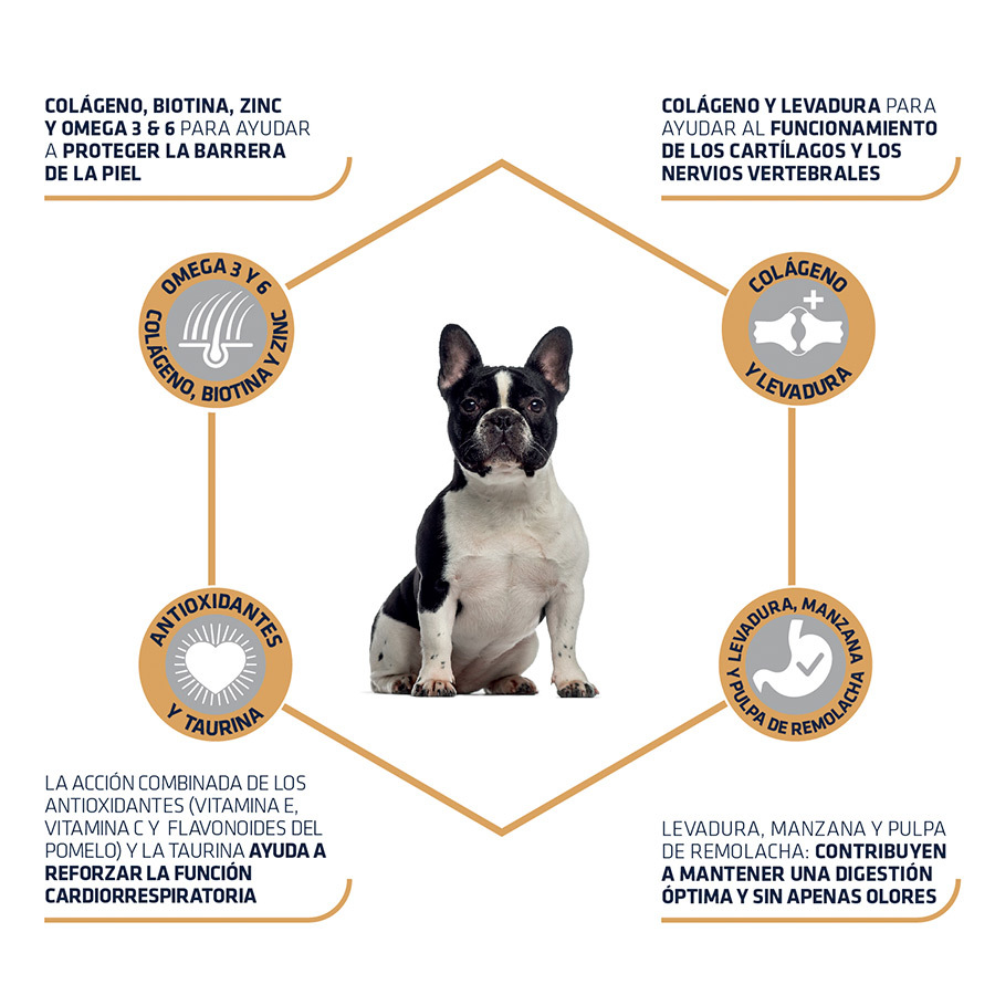 pienso_perros_affinity_advance_adult_french_bulldog_beneficios_ADV500749_M.jpg image number null
