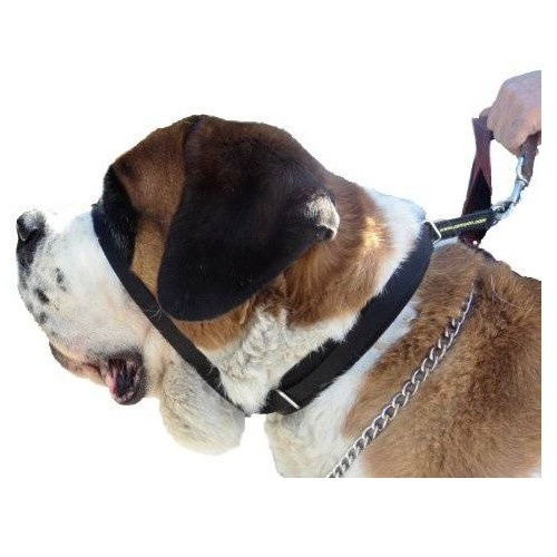 Canny Colossus collar antitirones para perros image number null