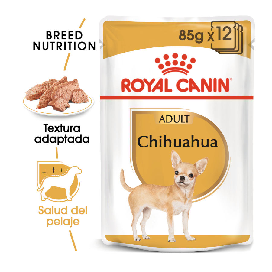 Pack 12 Sobres Royal Canin Chihuahua, , large image number null