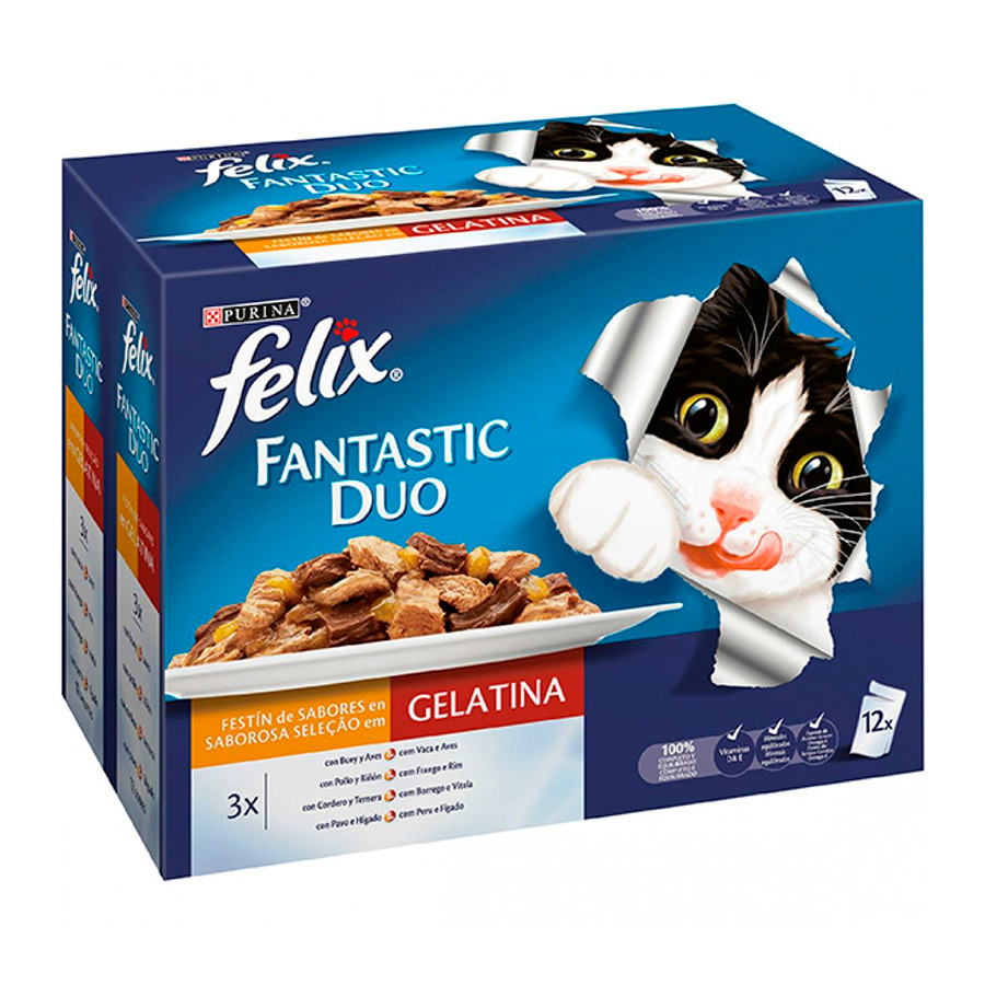 Purina Felix Fantastic Duo Delicious carne 12 x 100 gr, , large image number null