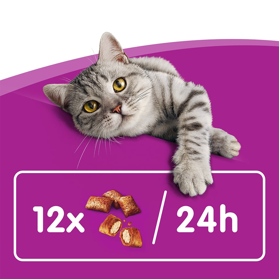 Whiskas Anti Hairball image number null